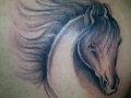 loyal-tattoo-tatuaje01